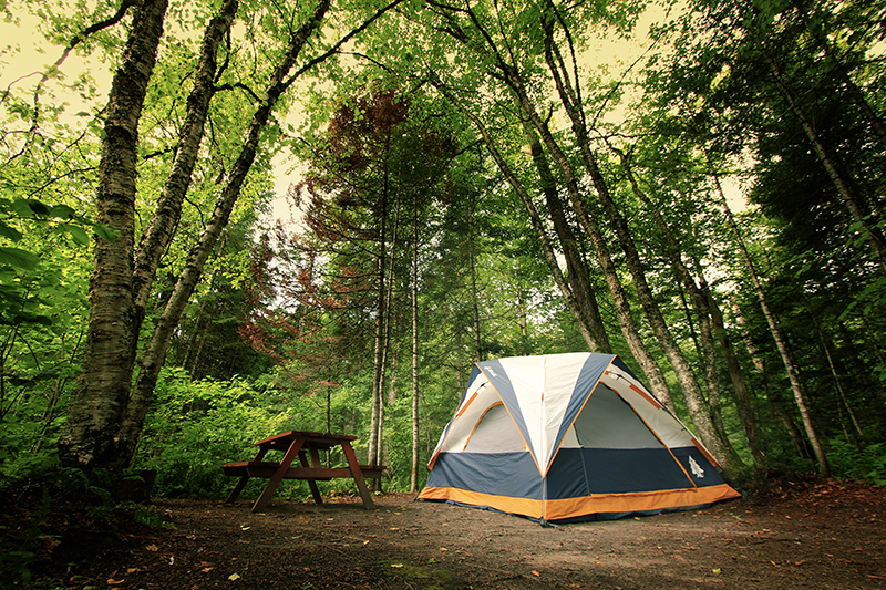 DEELAT Blog: Tips to Prepare Yourself for a Camping Trip