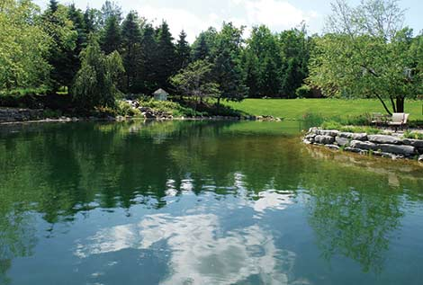 Deelat blog applications and uses for submersible pumps for Farm pond pumps